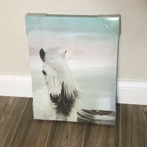Horse on Beach Canvas Painting